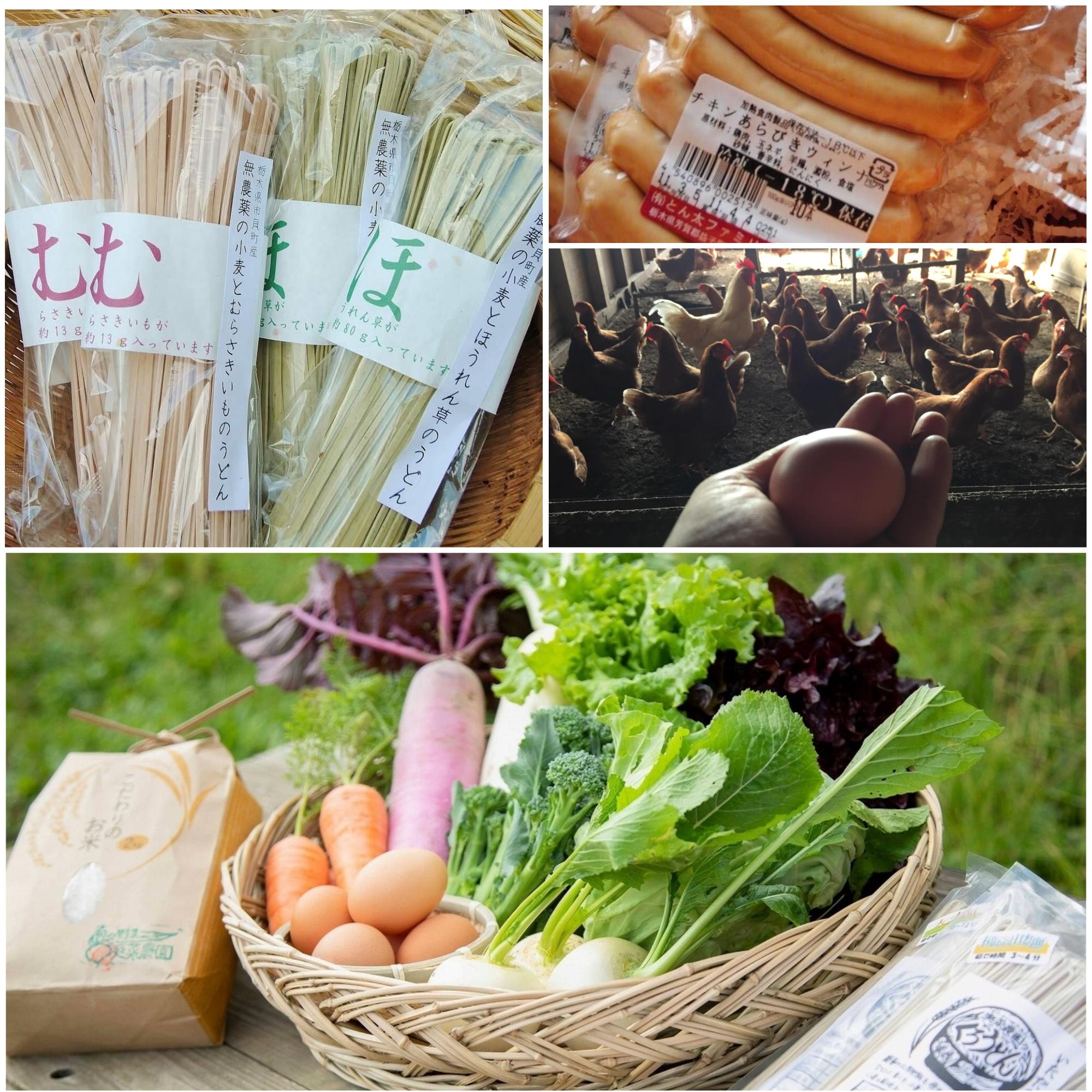 爽菜農園のニューフェイス 「むらさき色の野菜うどん」